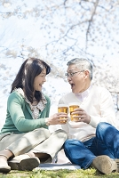 桜の下でビールを飲むシニア夫婦