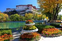 チベット ポタラ宮