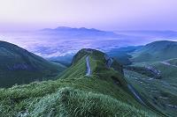 熊本県 ラピュタの道