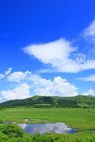 長野県 霧ヶ峰高原 八島湿原より草原と雲