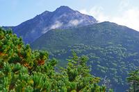 長野県 双児山から朝の甲斐駒ヶ岳