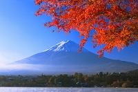 山梨県 河口湖 紅葉と富士山