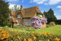 イギリス サリー フジが咲く民家