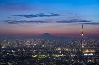 千葉県 東京スカイツリーと街並み 夜景