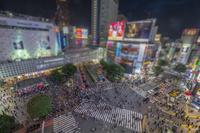 東京都 夜の渋谷交差点
