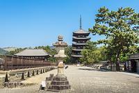 奈良市 興福寺 五重塔と東金堂
