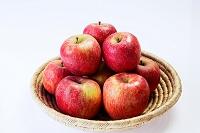 リンゴ サンふじ