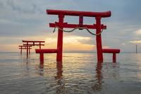 佐賀県 大魚神社の海中鳥居