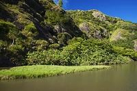 小笠原諸島の父島 八ツ瀬川