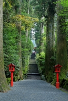 神奈川県 箱根神社 龍石段の参道