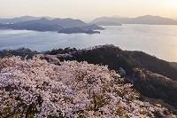 愛媛県 積善山から瀬戸内海