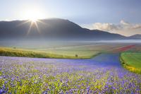 モンティ・シビッリーニ国立公園 イタリア ウンブリア州 ペル...