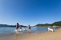ビーチで遊ぶ日本人の子供と犬