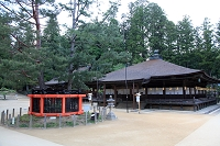 和歌山県 高野山 金剛峯寺 三鈷の松と御影堂