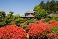 茨城県 偕楽園