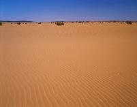 スーダン サハラ砂漠 風紋