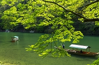 京都府  京都市 屋形船