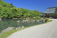 京都府 天龍寺の曹源池庭園