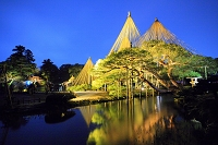 石川県 金沢市 兼六園・黒松の雪吊り ライトアップ