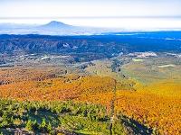 青森県 八甲田山山麓 八甲田ロープウェーとブナの紅葉と岩木山