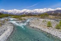 長野県 新緑芽吹く松川と白馬連峰