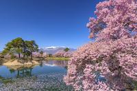 長野県 六道の堤と中央アルプス
