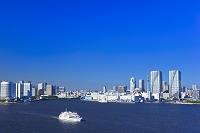 東京都 東京湾と東京スカイツリー
