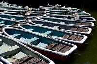 東京 手漕ぎボートの係留