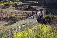 愛媛県 河内の屋根付き橋 田丸橋