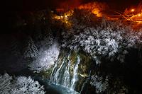 白髭の滝のライトアップ
