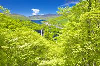 栃木県 新緑の華厳の滝