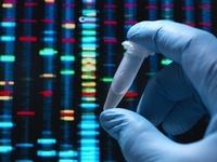 遺伝子検査を行う科学者