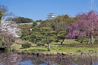 兵庫県 明石城跡 巽櫓