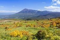 岩手県 八幡平より望む岩手山