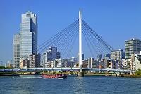 東京都 聖路加タワーと中央大橋