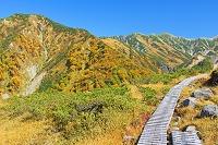 富山県 天狗平の木道と奥大日岳(左)と別山(右奥)