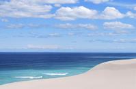 南アフリカ共和国 喜望峰 砂丘