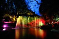 熊本県 鍋ヶ滝のライトアップ