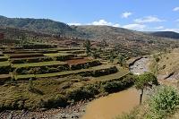 マダガスカル 中央高地 棚田