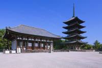 奈良県 興福寺 五重塔
