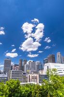 東京都 新宿の高層ビル群と夏の空