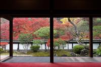 奈良県 正暦寺 福寿院