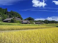 岡山県 八塔寺ふるさと村