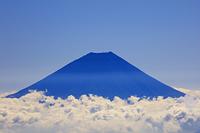 山梨県 間ノ岳稜線より雲海と富士山 南アルプス