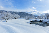 滋賀県 雪景色の余呉川