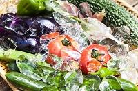 氷と夏野菜