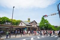 東京都 山手線 原宿駅前
