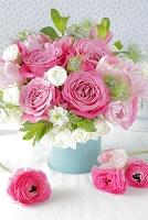 ピンクのバラとチューリップ