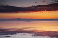 北海道 ホタテ漁船の出漁と野付湾の朝