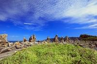 和歌山県 ハマアザミと橋杭岩と雲